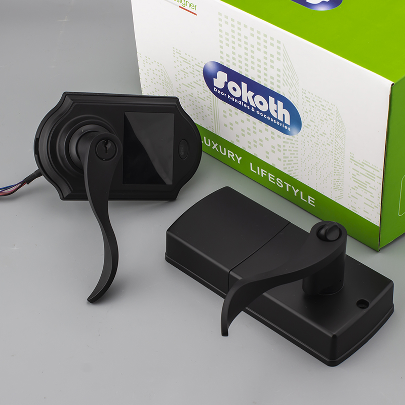 American market electronic access black smart lock